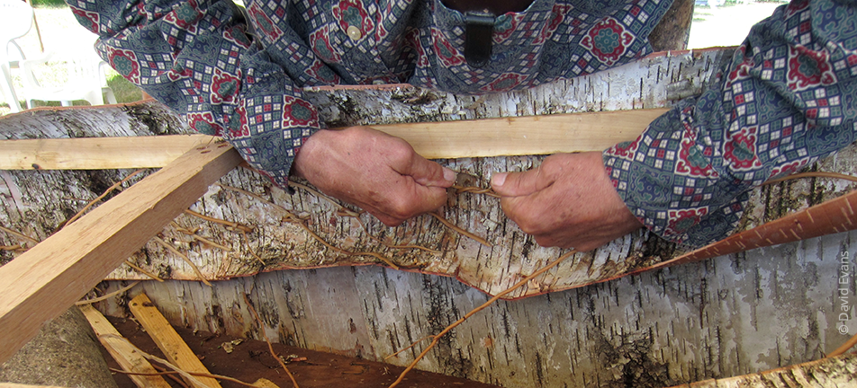 birch bark canoe making, white spruce roots, craft, traditional, skill