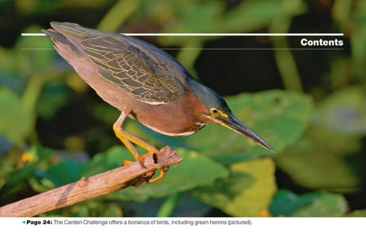 ON Nature Magazine Fall 2018