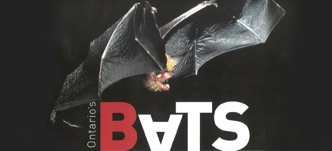 Bat Guide Cover