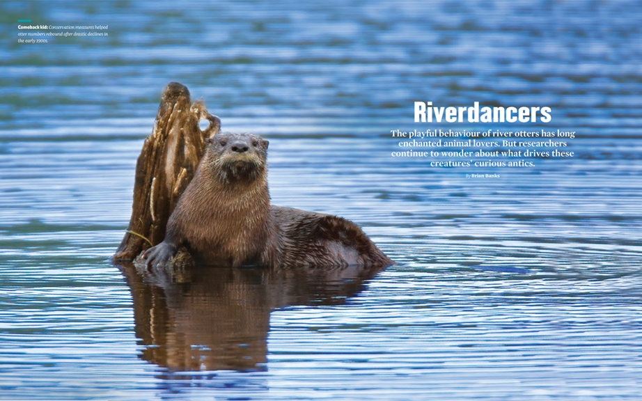 Riverdancers, ON Nature, Fall 2020 https://view.publitas.com/on-nature/fall-2020/page/18-19